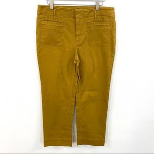 Ann Taylor LOFT Dark Tan High Rise Cropped Pants